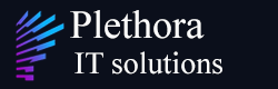 Plathora IT solutions